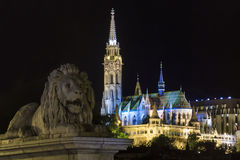 Lion Guarding the Matyás Templom in Budapest Hungary Stock Photo