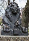 Lion guarding the Stock Photo