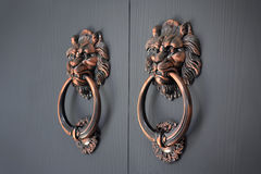 Lion handle door. Lion handles of an ancient door Stock Images