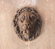 Lion Head photographie stock