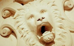 Lion Head photo libre de droits