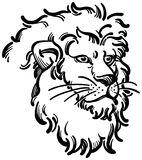 Lion Head. An illustration of a Lion's head and mane Royalty Free Stock Image
