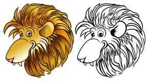 Lion Head lizenzfreie stockfotos