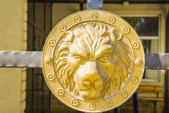 Lion Head Fotos de archivo