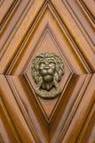 Lion Head Imagenes de archivo