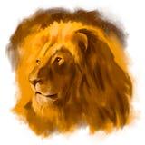 Lion Head Photo libre de droits