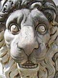 Lion Head Lizenzfreie Stockfotografie