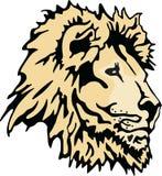 Lion Head Fotografía de archivo