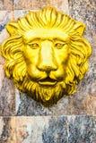 Lion Head imágenes de archivo libres de regalías