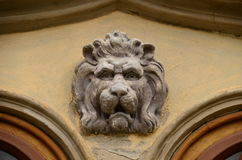 Lion Head Stockfoto
