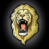 Lion head background Stock Image