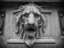 Lion head bass-relief Stock Image