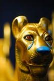 Lion Head de oro Imagenes de archivo