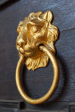 Lion head door knocker Royalty Free Stock Images