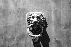 Lion Head Door Knocker, Ancient Knocker, Florence, Italy. (black and white).  stock photography