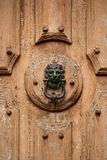 Old door knocker. Lion head door knocker on old wooden door stock image