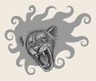 Lion head drawing decorative Stock Images