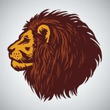 Lion Head Drawing. Vector Illustration Stock Images