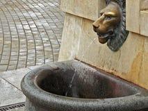 Lion Head Fountain Imagem de Stock Royalty Free