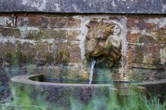 Lion Head Fountain stockfotos