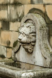 Lion head on the fountain. Royalty Free Stock Images