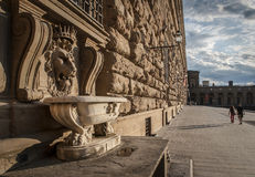 Lion head fountain of Pitti Palace of Medici Royalty Free Stock Photo