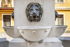 Lion head fountain in spa town Baile Herculane Royalty Free Stock Photo