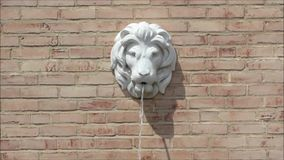Lion Head Fountain stock footage
