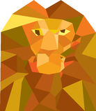 Lion Head Front Low Polygon Royalty Free Stock Photography