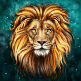 Lion head in front Royalty Free Stock Images