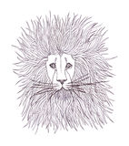 Lion head in graphic style Stock Images
