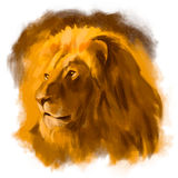Lion head. Hand drawn vector colorful illustration Royalty Free Stock Photo