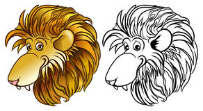 Lion Head Royalty Free Stock Photos