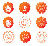 Lion head icon set. Nine icons cute lion head Stock Photos