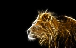 lion head illustration  Stock Photos