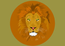 Lion head. An illustration of a lion head in colorful circle vector illustration