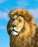 Lion head Illustration. Lion king in all of his glory Portrait, Hand drawn digital color Illustration. For Art, web, print, wallpaper, greeting card, fashion royalty free illustration