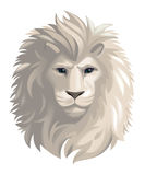 lion head illustration Royalty Free Stock Photo