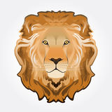 Lion head illustration Stock Image
