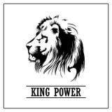 Lion Head. King power, stock vector illustration Stock Photo