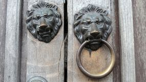 Lion head knock on the wooden gate Royalty Free Stock Image