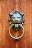 Lion head knocker Royalty Free Stock Images