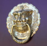 A Lion head knocker. In the door Stock Photography
