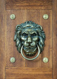 Lion head knocker Stock Image
