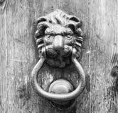 Lion head knocker on an old wooden door Stock Photos