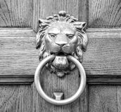 Lion head knocker on an old wooden door Royalty Free Stock Photography