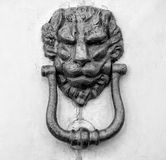 Lion head knocker on an old wooden door. In Florence,Tuscany, Italy black and white stock photos
