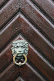The lion head knocker with the ring on the wooden door Royalty Free Stock Image