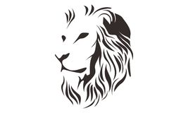 LION HEAD LINE ART DRAWING ILLUSTRATION Royalty Free Stock Photography