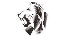 LION HEAD LINE ART DRAWING ILLUSTRATION Stock Photo